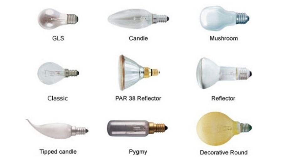 What types of lights attract insects